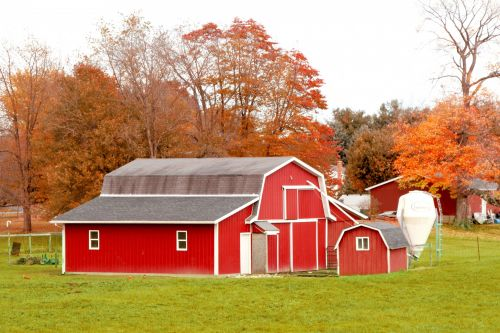 Red Barn In Autumn Field