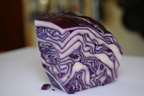 red cabbage eat food