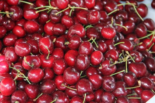 red cherries fruit cherry
