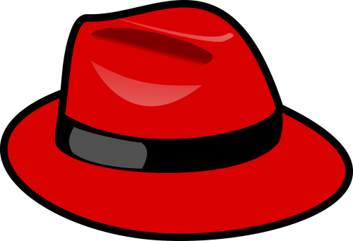 red hat fedora fashion