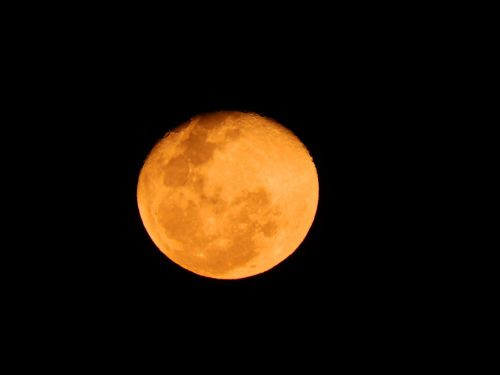 red moon moon strawberry night