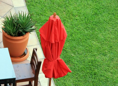 Red Parasol And Lawn