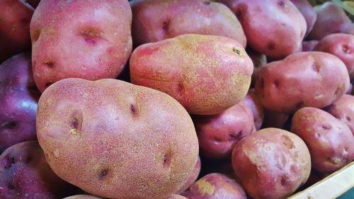 red potatoes potatoes food