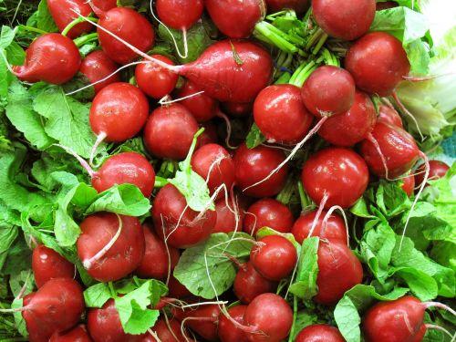 red radish vegetable salad