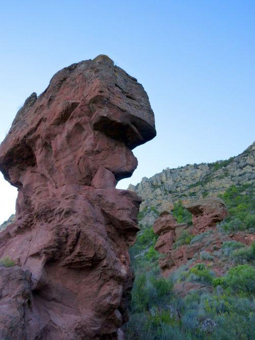 red rock sandstone head shape