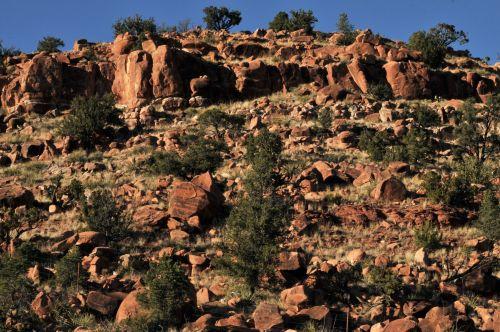 Red Rocks Mountain In Desert