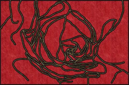 rose,red,art,digital,color,red rose 7