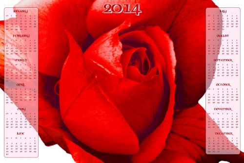 Red Rose Calendar 2014