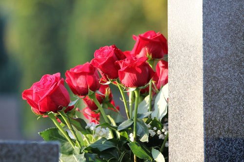 red roses bouquet  condolence  remembering