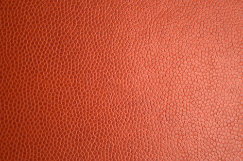 red skin leather texture leather