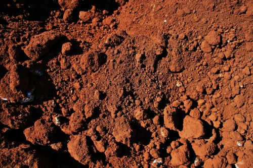 Red Soil With Sods