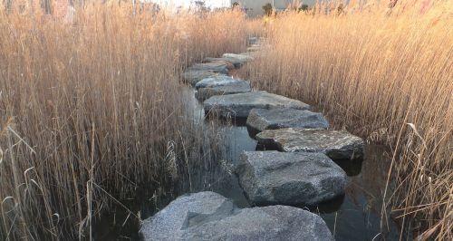 reed stepping stone ishibashi
