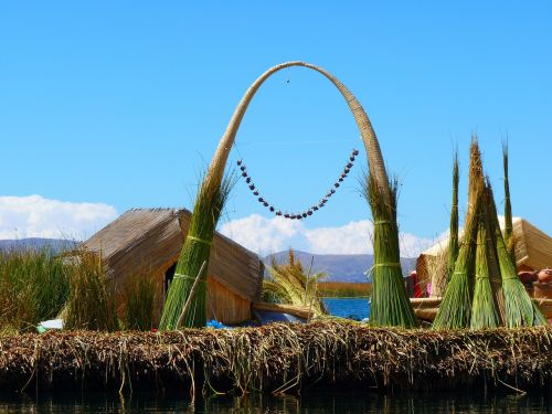 reed totoraschilf reed island