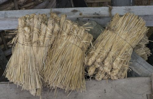 reed roof reed roofing