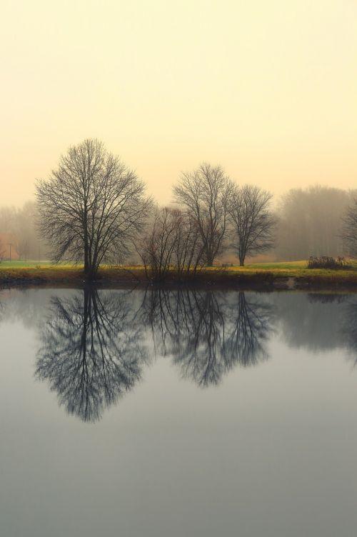 atspindys,gamta,du tonai,vanduo,natūralus,kraštovaizdis,dangus,Natūralus grožis,gamtos kraštovaizdis,taikus,lauke,ramus,meditacinė prigimtis,meditacija,rūkas,medis,ežeras,tvenkinys,rūkas,migla,miglotas,rytas