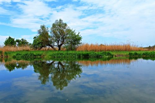 reflection nature calm