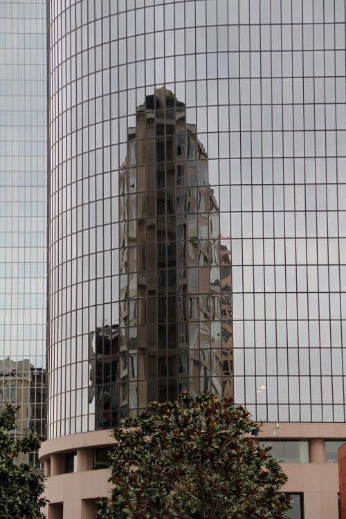 reflection los angeles downtown