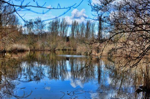 basel green 80 park reflections