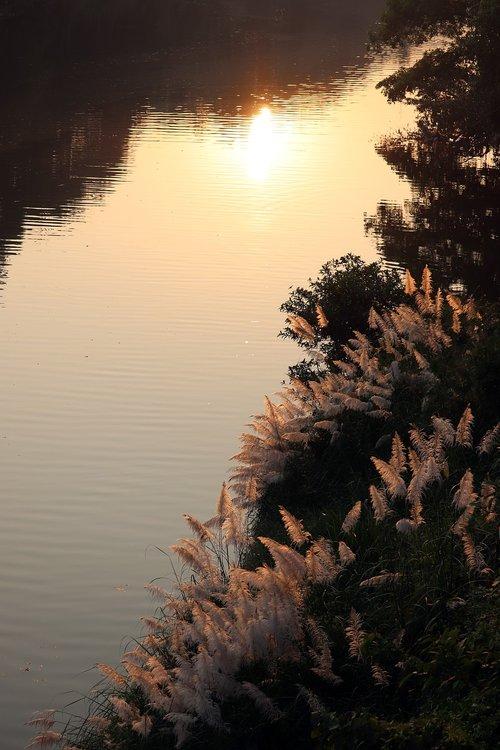 reflections  river bank  sunbeam
