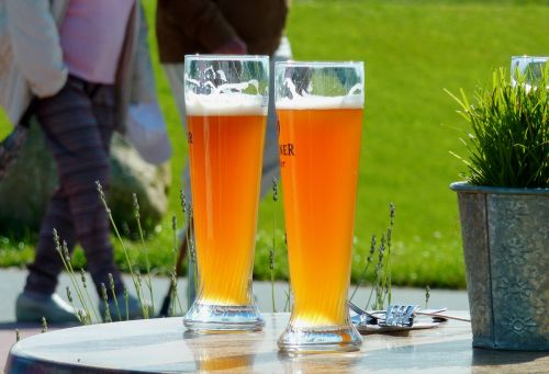 refreshment wheat beer drink