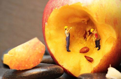 refurbishment apple apple cores