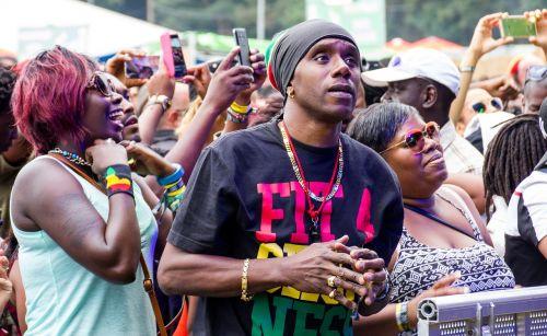 reggae public concert