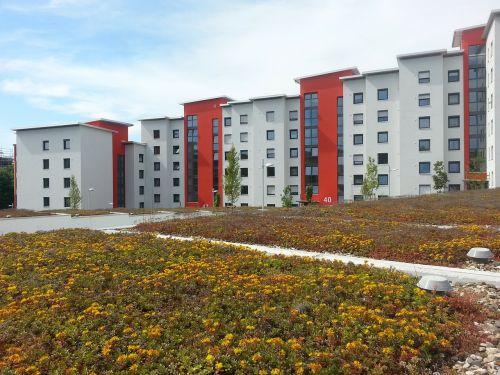 rehabilitation new building green roof