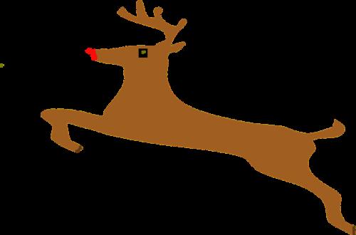 reindeer stag deer