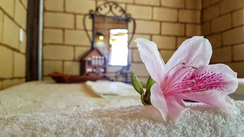 relaxation  flower  luxury