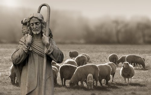 religion  faith  shepherd