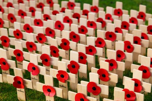 Free Photos Day Of Remembrance Search Download Needpix