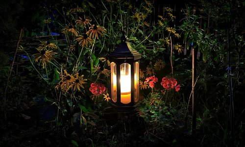 replacement lamp  flowers  evening