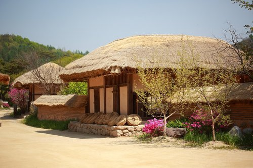 republic of korea  traditional  thatch roofed hose