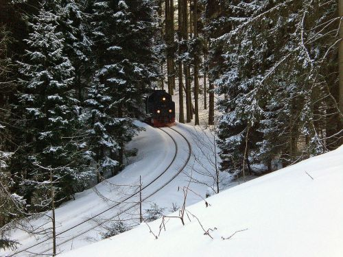 resin narrow gauge train brocken railway
