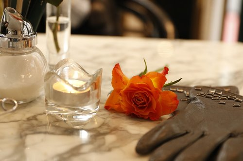 restaurant  gloves  rose