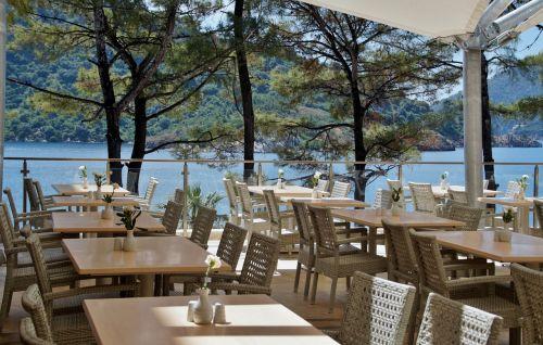 restaurant chair tables