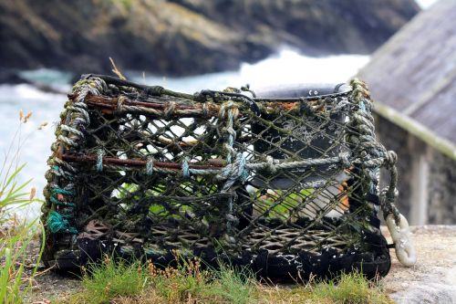 reuse fishing village booked