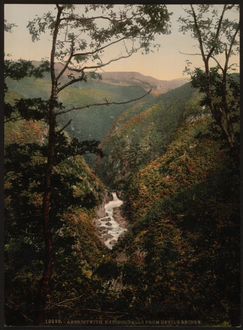 Rheidol Falls Wales