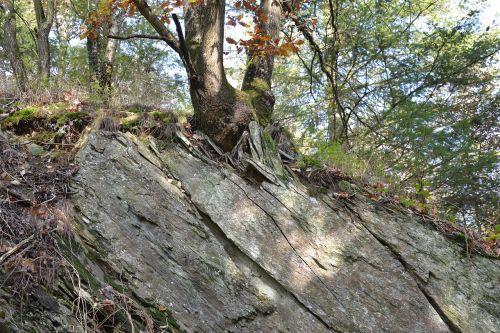 rheinisches-shale eifel forces of nature