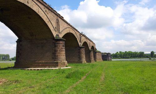 rhine railway bridge rhine meadow