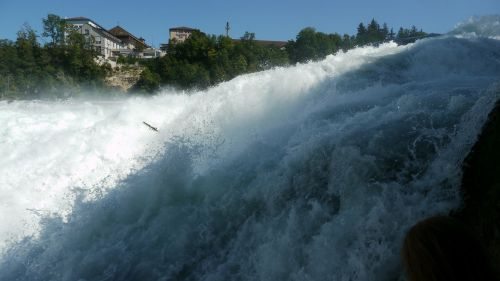 rhine falls schaffhausen waterfall