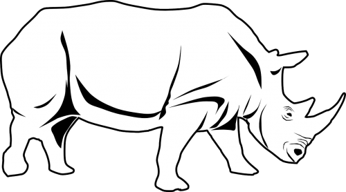 rhino africa animal