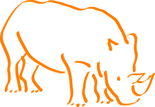 rhino rhinoceros wildlife