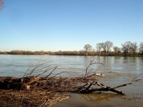 rhône river nature