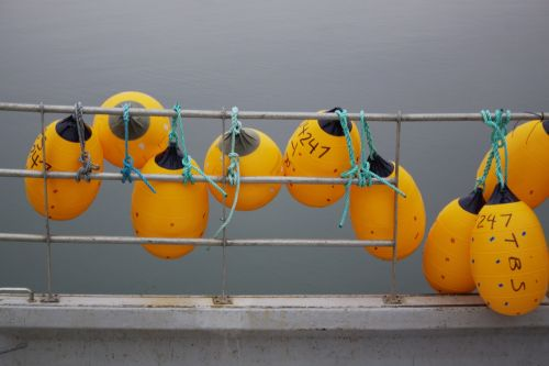 ribbed floats buoys commercial fishing