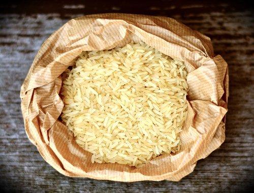 rice  rice grains  food