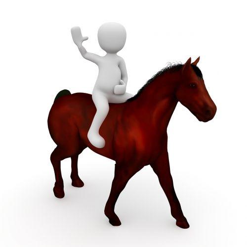 ride horse reiter