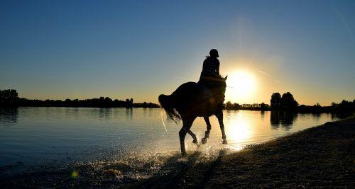 ride gallop sea