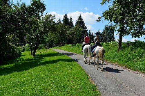 ride equestrian riding horses