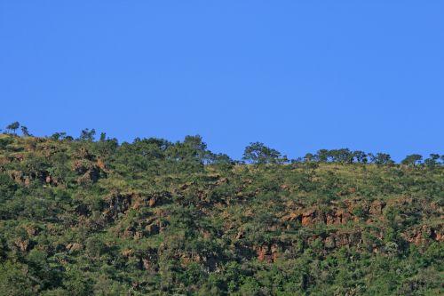 Ridge With Rocks And Trees